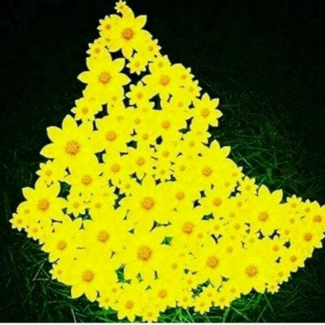 EECh4QyW4AEY eO Ethiopians welcome their new year with renewed hope