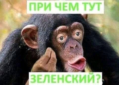 Гончарук та Єрмак зустрілися у київському ресторані, - ЗМІ - Цензор.НЕТ 492