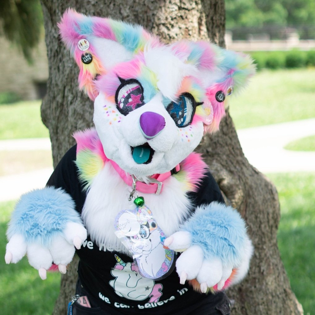 I had forgotten about Twitter.. here's pictures xD  #furryoc #fursuitmaker #furrycomunity #furryfandomart #furrysuit #fursuit  #furryartist #furryconvention #furrys #furry #furrie #furryart #furryanthro #furrypride #furriesfurever #furrypride #fursuiting #fursuithead #furries<br>http://pic.twitter.com/6q35SDddiI