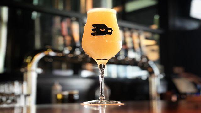 @marblebrewery #DesertFog #Hazy #IPA #Albuquerque  #NM  #nmbeer  #Burque  #DukeCity  #ABQ #craftbeer  #Beerstagram  #beertography  #beerporn  #beerlove  #drinklocal  #drinkfresh  #drinkwhatyoulove #drinkcraftnotcrap  #craftforlife  #beermeseymour  #insta… https://t.co/XHXR0jzTT4 https://t.co/W6PdFp4xZb