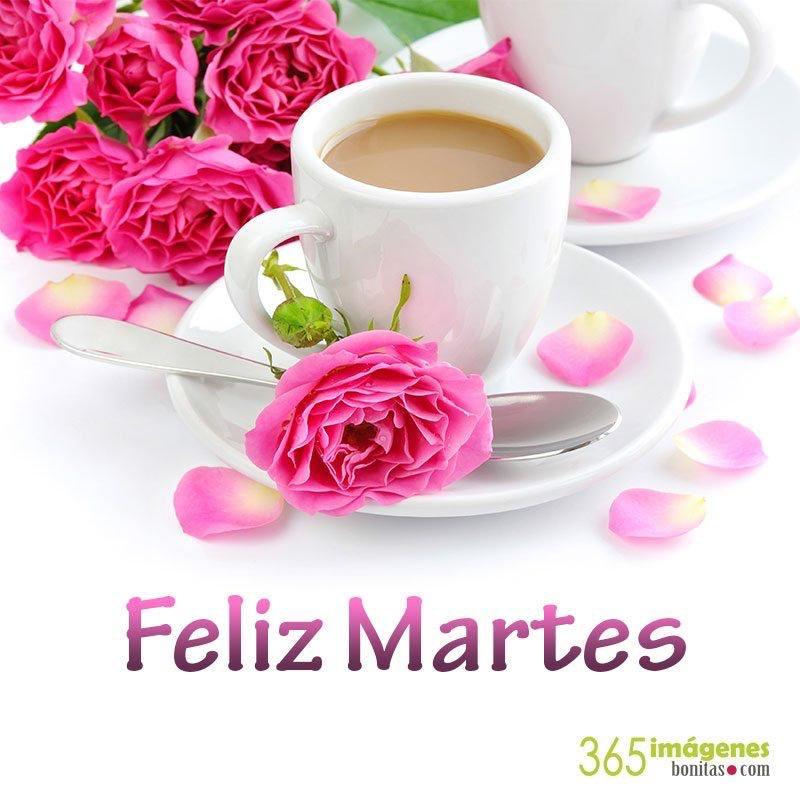 Maria Dolores On Twitter Buenos Dias Mis Chicas Feliz