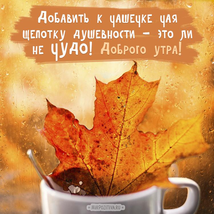 Смешные, картинки осеннего утра с пожеланиями
