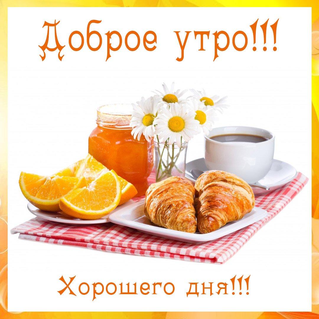 Картинка доброе утро добрый день, дню