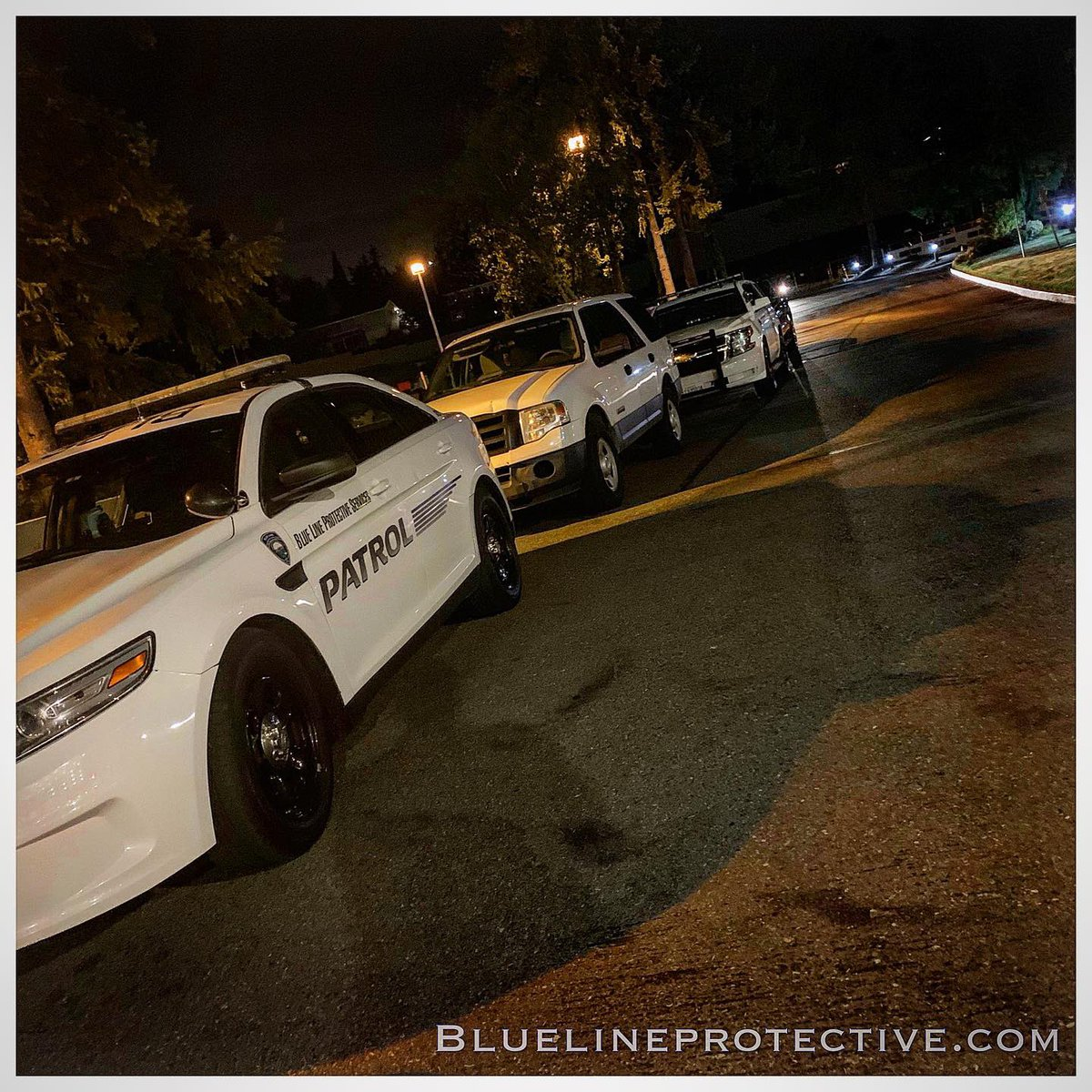 Doing a lil' rodent control during a furry convention...#bluelineprotective #events #furryconvention #furrycon #furry #furries #rodent #cats #dogs #rats #mice #animal #animals<br>http://pic.twitter.com/IwCuNs2iJo