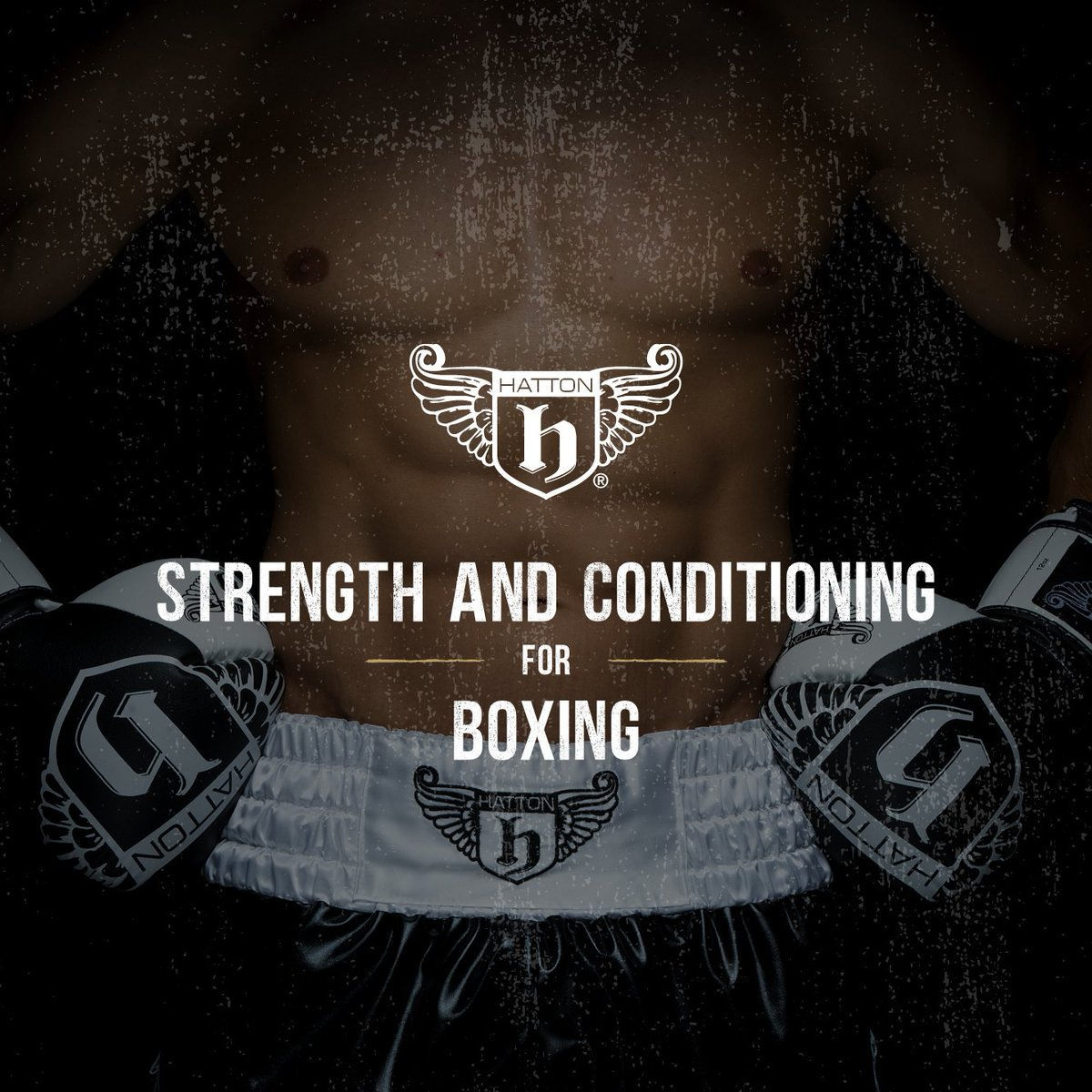 Were in Manchester + London this year with our Strength & Conditioning course. We have designed the programme to deliver results + improve your understanding and applicability of technique. + much more! Places will fill fast! bit.ly/2m8kuLN