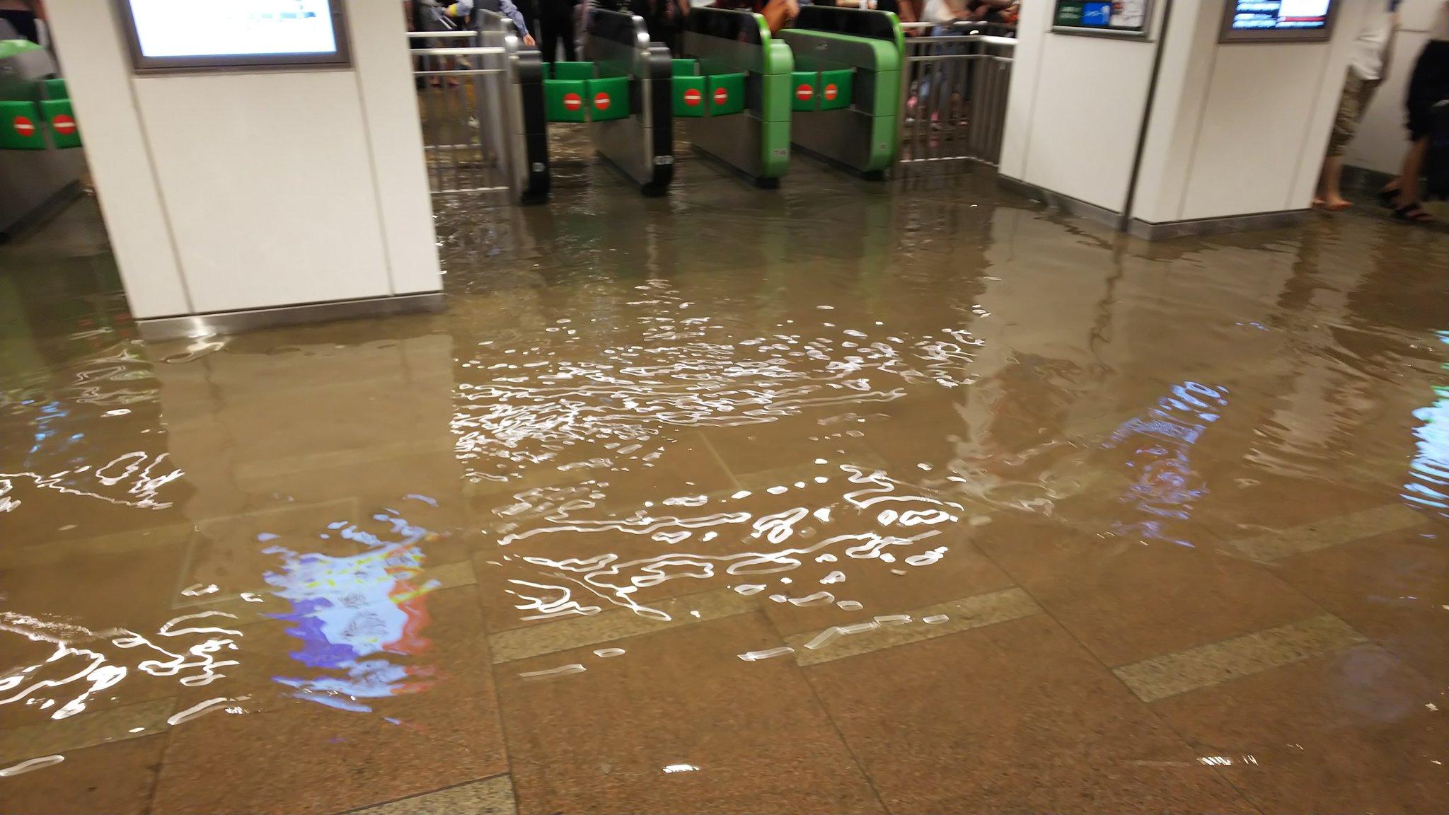 画像,新小岩駅…浸水……だと…⁉️ https://t.co/5yzzs6My52。
