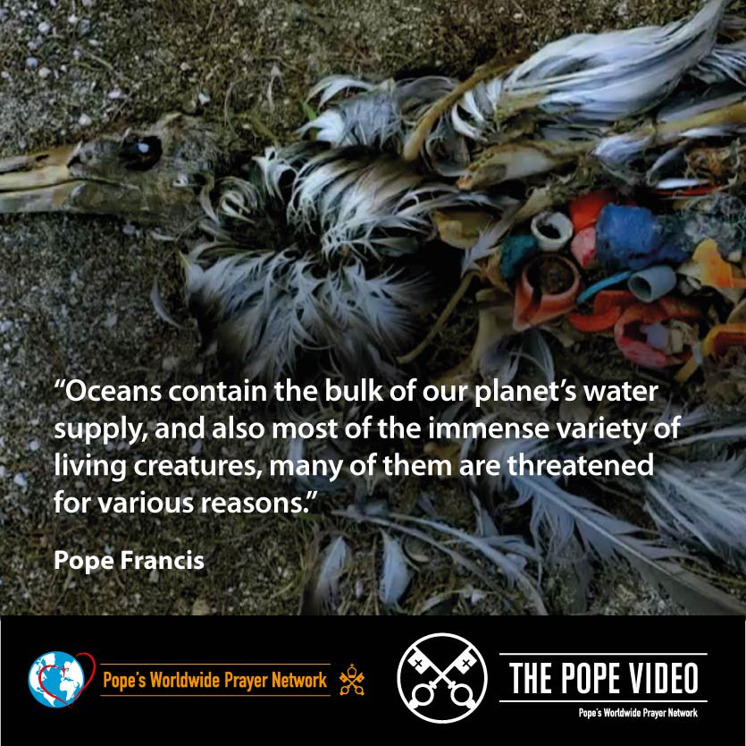 @Pontifex invites us all to take care of the oceans. Their waters are the source of a great part of the life on our planet. #Creation #ThePopeVideo #SeasonOfCreation