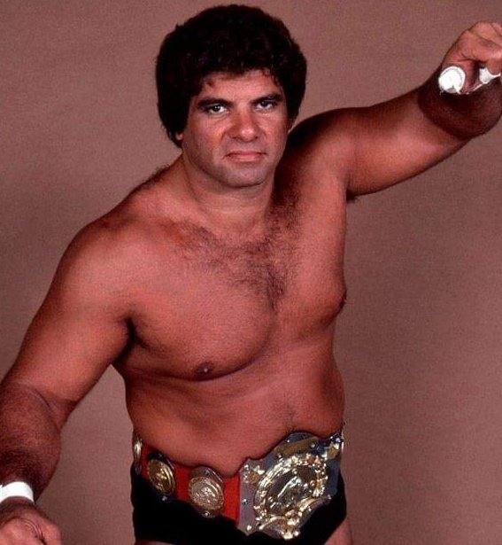 magnificentmuraco hashtag on Twitter