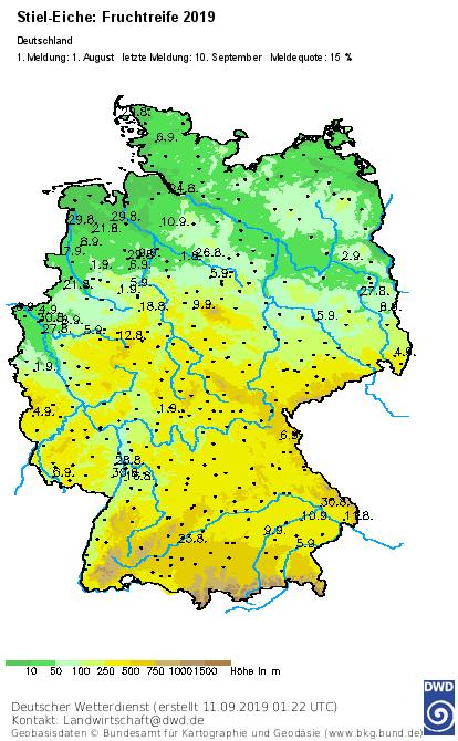 Wetter Hilden 14 Tage