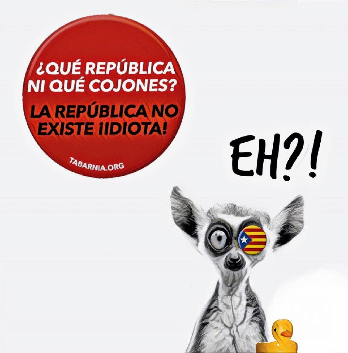 RT @niblick62: Despierta ATONTAO #Diada2019 https://t.co/ZeRQKIlTCw