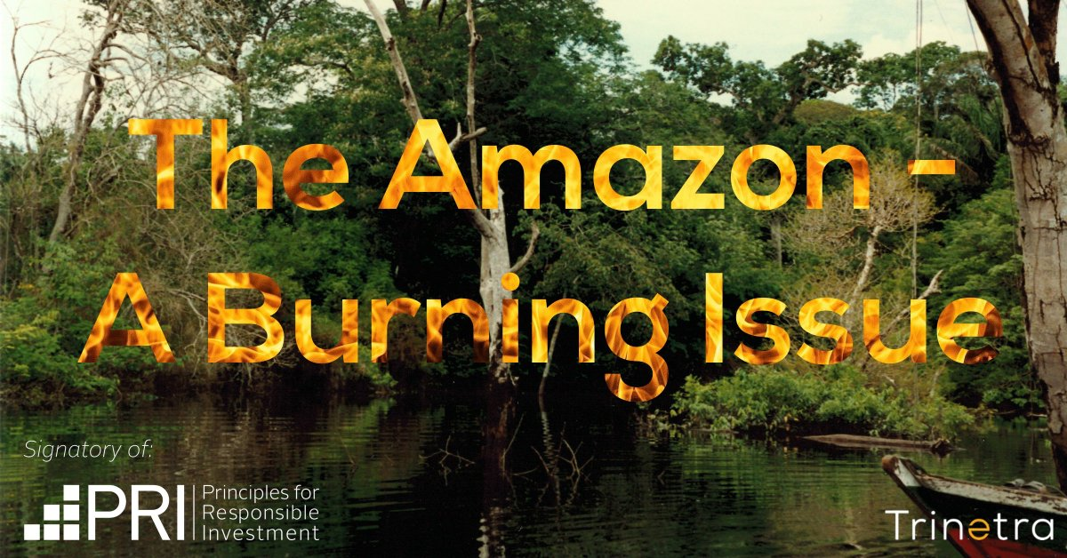 We, alongside other investors, signed the UNPRI's Global Investor Statement concerning deforestation and forest fires in the Amazon - this is an important issue the whole investment community needs to get behind. No excuse not to act. #amazonrainforestfire #AmazonRainforest