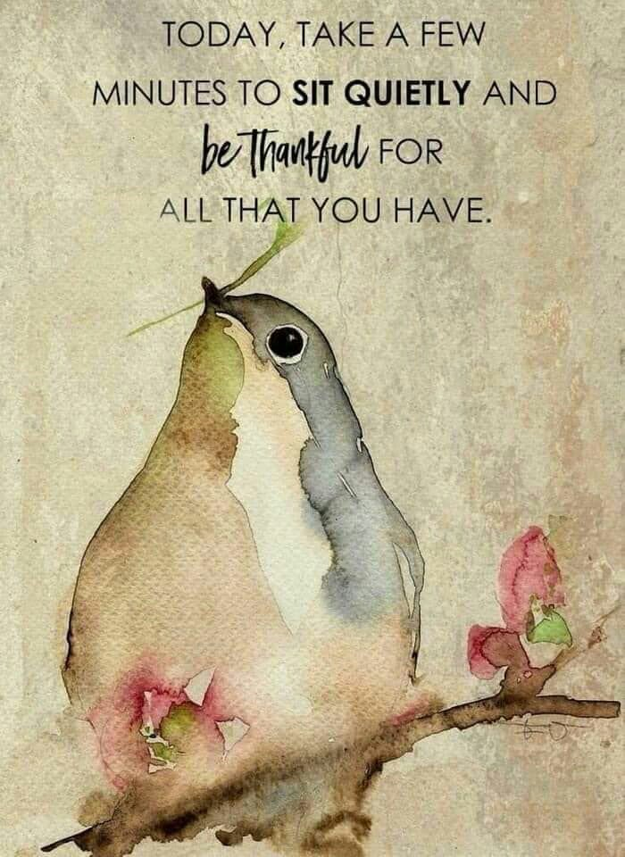 Today, Take A Few Minutes To Sit Quietly And #BeThankful For All That You Have. #Love Life And Life Will Always #Love You! <br>http://pic.twitter.com/NhgJh58hfV