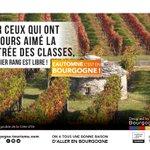 #Lautomnecestenbourgogne 🍁🍇 et les premiers rangs de nos vignes vous attendent pour une rentrée millésimée !