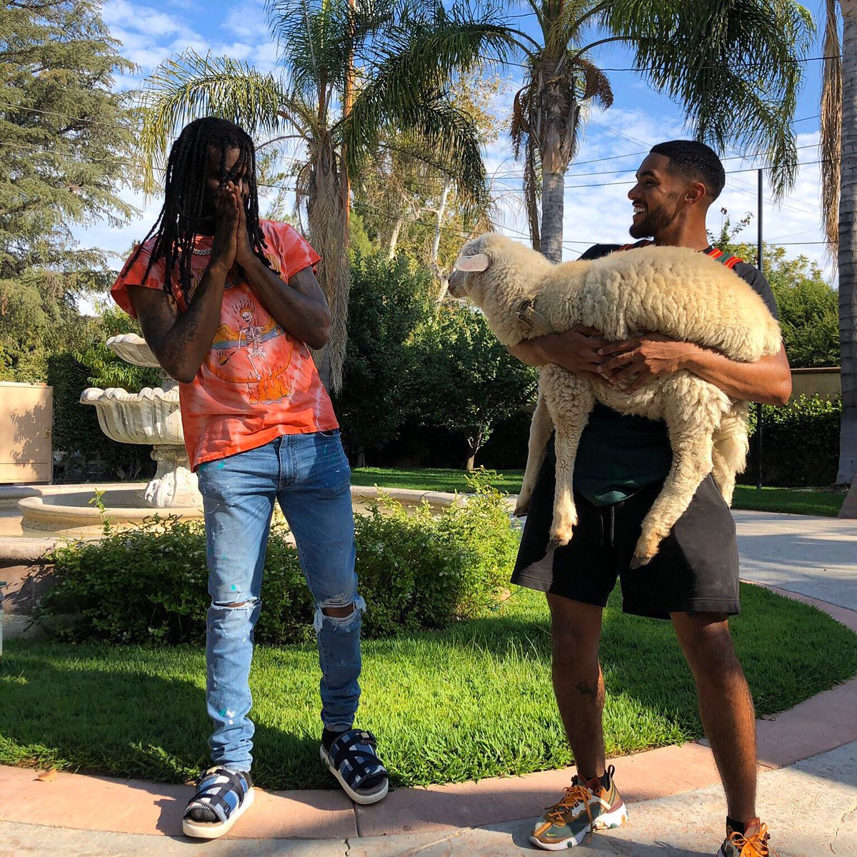 Chief keef hit me up talkin bout let's race our lambs bro, so I pulled up with my lamb not knowing he meant Lamborghini 😔