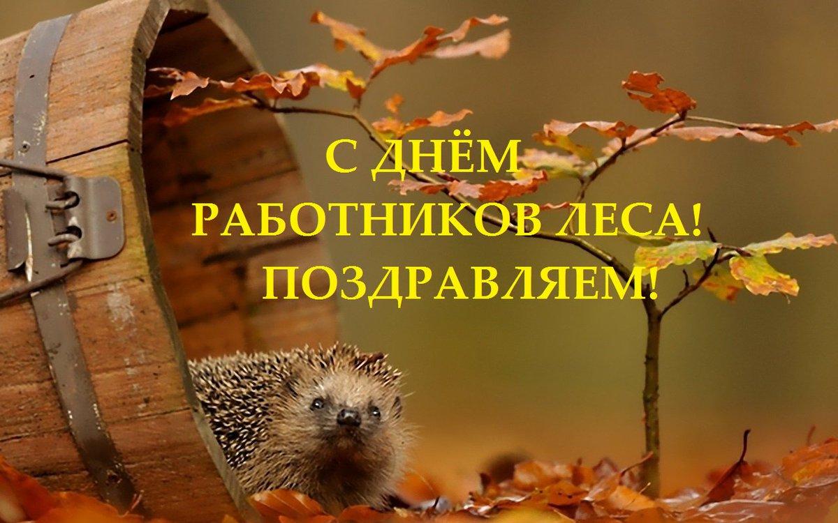 Поздравления день работника леса открытка
