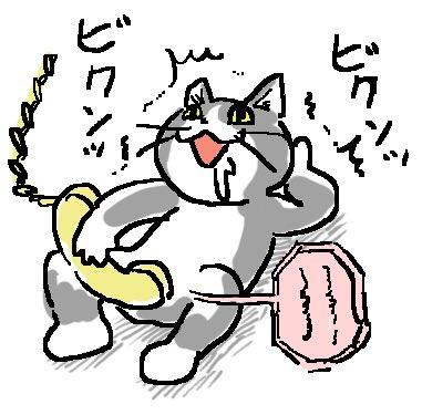 ヨシ 現場 猫