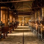Image for the Tweet beginning: .@cointreau's distillation respects tradition and