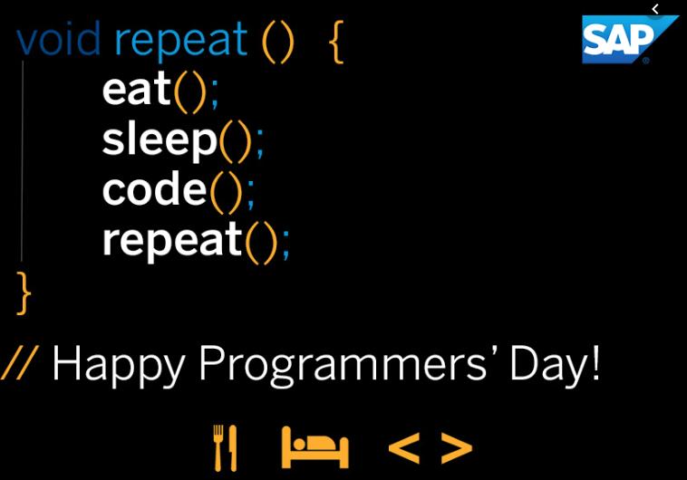 روز برنامه نویس کیه