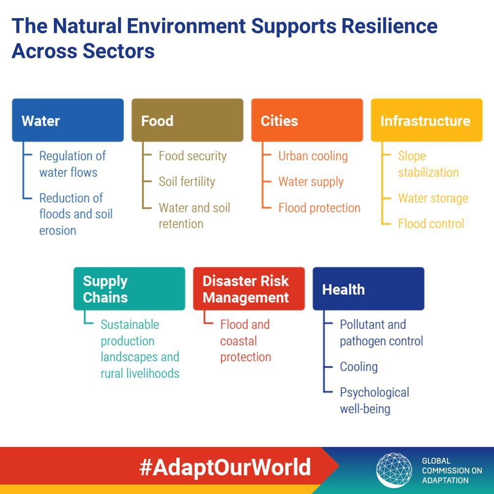 RT @UNEnvironment Nature gives protection against mounting impacts of #climatechange that is of incalculable value & irreplaceable. A thriving natural environment is a cornerstone of building resilience across all sectors. Learn more: https://t.co/ZbVBI7yxhd #AdaptOurWorld #ClimateAction