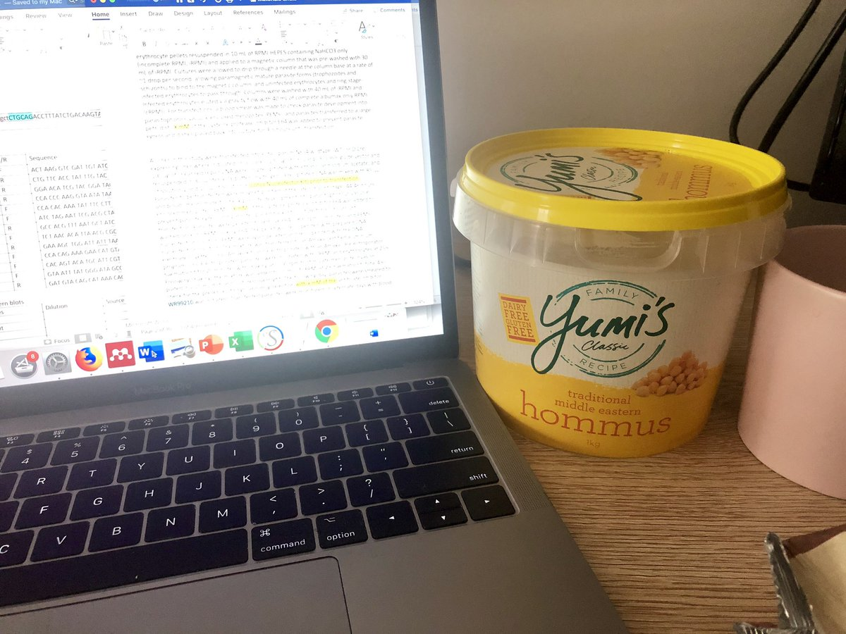 """#thesis writing or """"how quickly can one eat a kilo of hummus"""" challenge?   ...the answer will shock you! #phdchat #AcademicChatter <br>http://pic.twitter.com/Pd7LsTZkA2"""