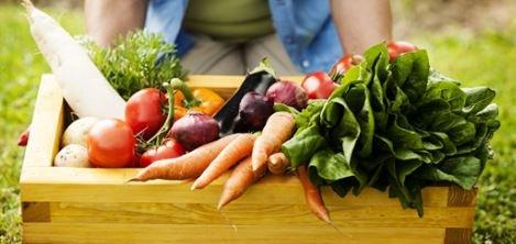 Filiera agricola e prezzi di mercato più traspare...
