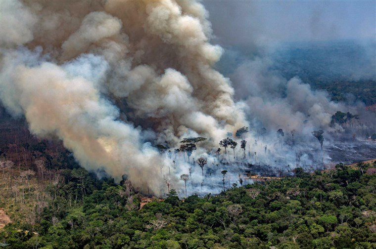 The Amazon Rainforest had lost 20% of its size due to Deforestation and now due to the wild fire the Brazillian Amazon forest has gone down by 80%.  #Oxygenos  #PrayforAmazonia, #PrayforAmazonas #AmazonRainforest<br>http://pic.twitter.com/8nel6ufMmx