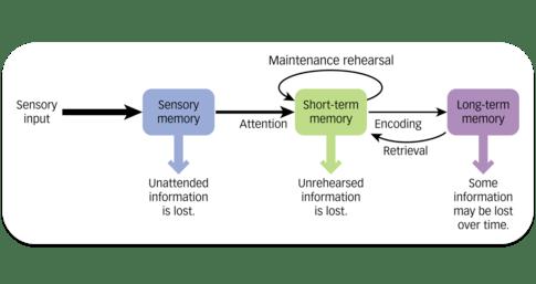 Been-Based Wandelen? onderzoekonderwijs.net/2019/09/13/bee…