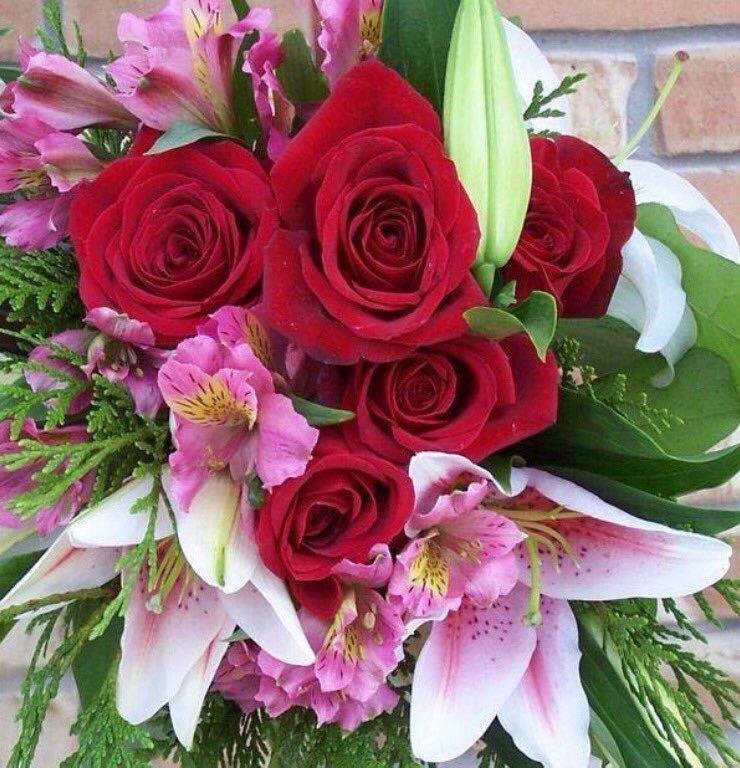свиноматка, открытка с днем рождения дочери красивые цветы сотрудничеству дилеров