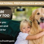Image for the Tweet beginning: #Preparedness is for pets too!