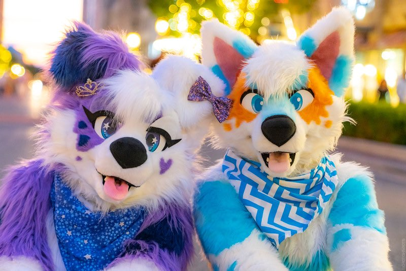 Happy #FursuitFriday with @SplashFusky ! Hope everyone's day is going great   : @DontHugCacti  : @ChatahSpots   #fursuiter #DailyDHC #FridayThe13th #furryfandom<br>http://pic.twitter.com/NhS9jinuR2