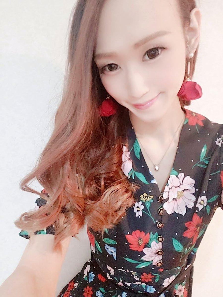 カカオ 常夏