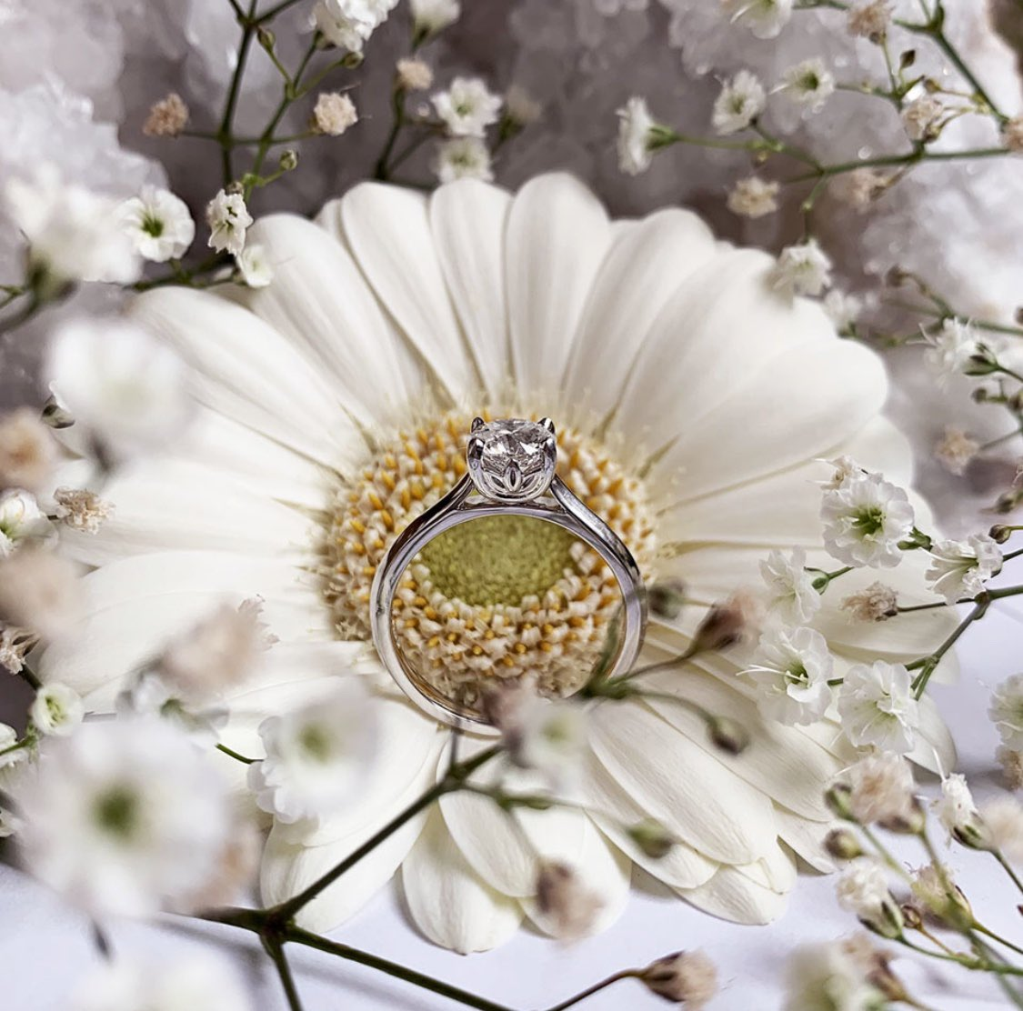 "test Twitter Media - 🌼 This might be one of our favourite photos ever! 💍 ""Why have a diamond like billions of others, when you can have the flower-facetted diamond with only 500 in the world?""   #wyldeflowerdiamond This one is the same size as the one you can win inside a bottle of @bathdistillery https://t.co/ZC2wTVvawx"