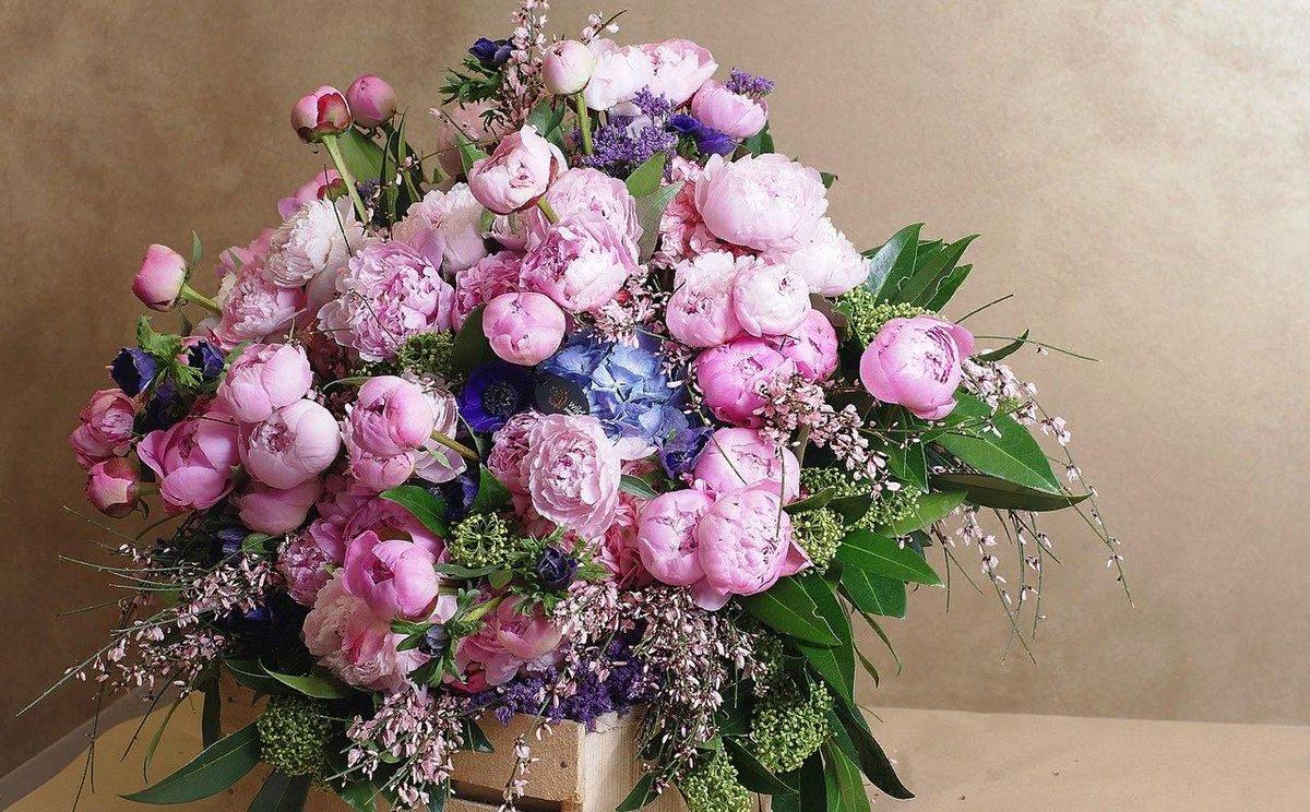 Фото цветов пионы букетов красивые
