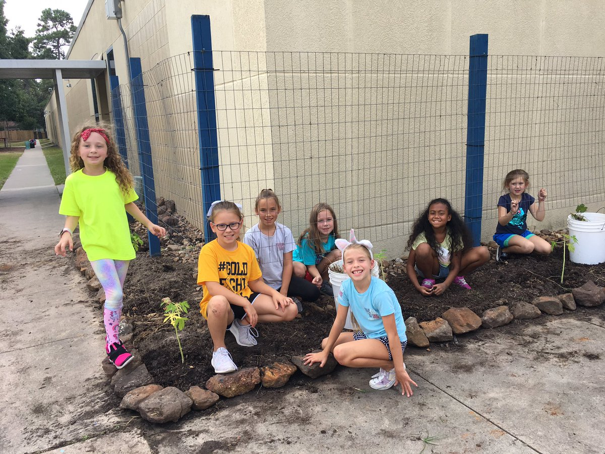 These girls are using their recess time to weed our garden. @HumbleISD_DWE #DWE2020 #pbl<br>http://pic.twitter.com/LvPqrjKI3U