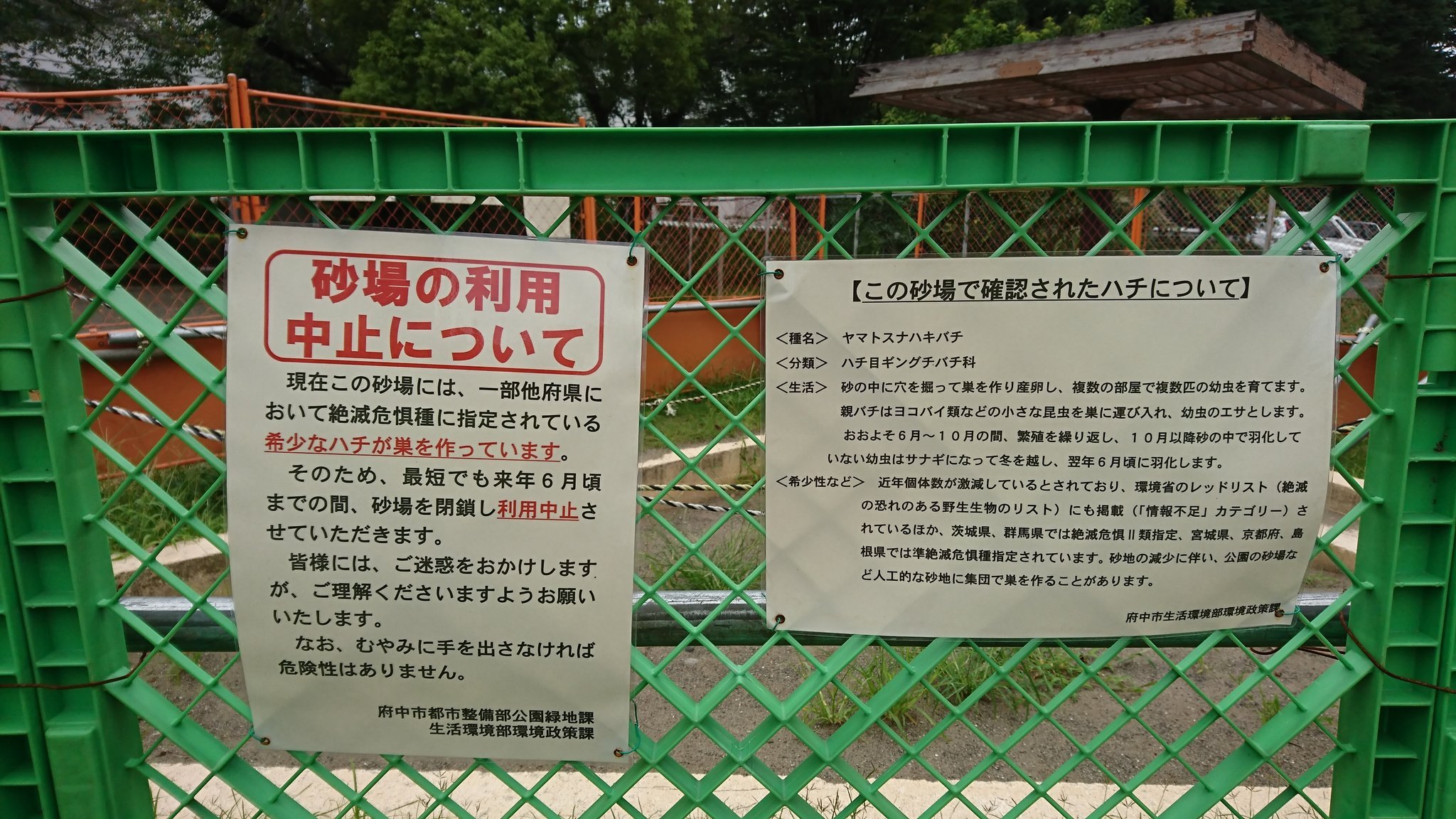 公園の砂場が使用禁止!まさかの理由に納得。