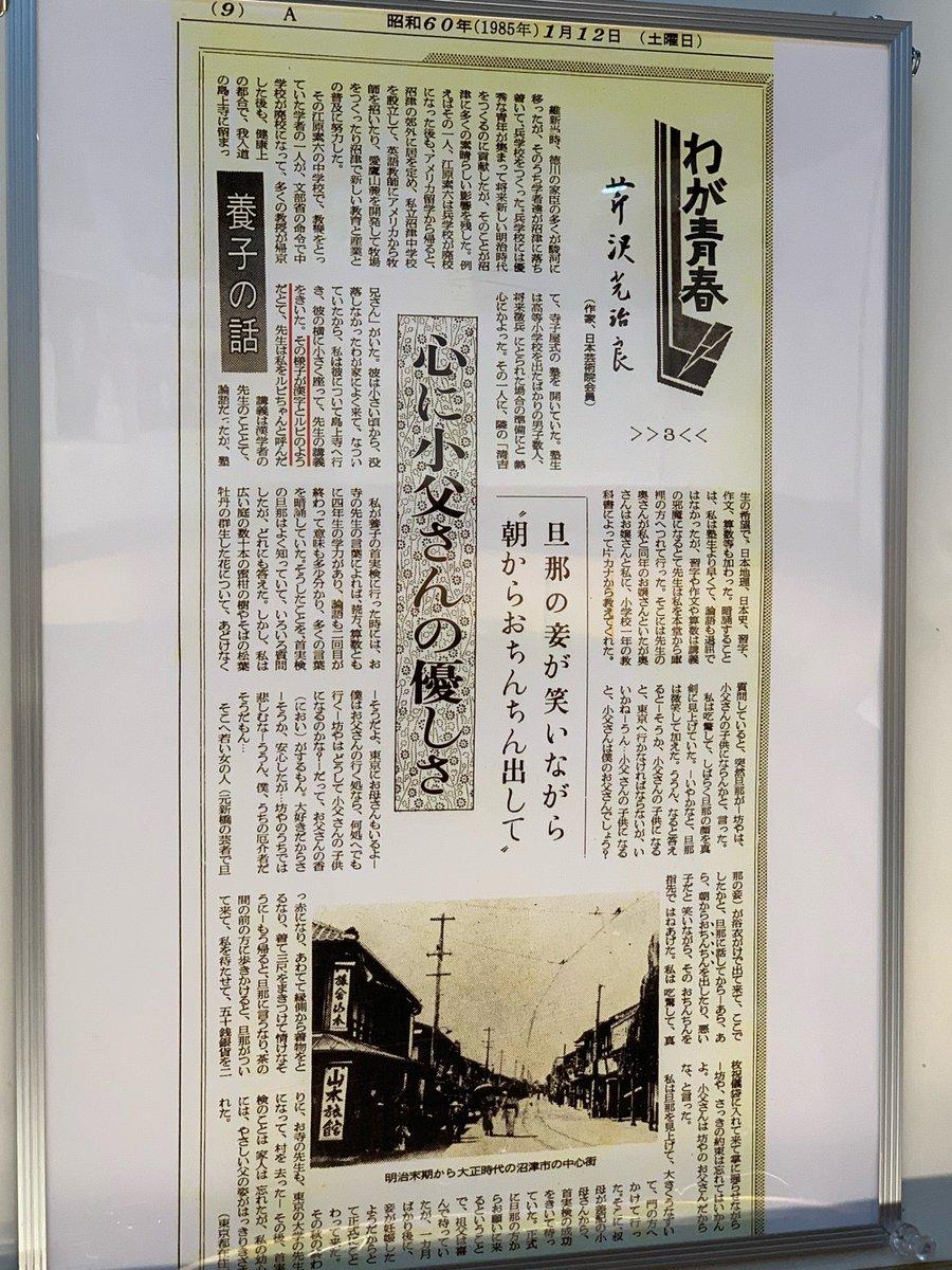 芹沢光治良記念館(4)ルビちゃん