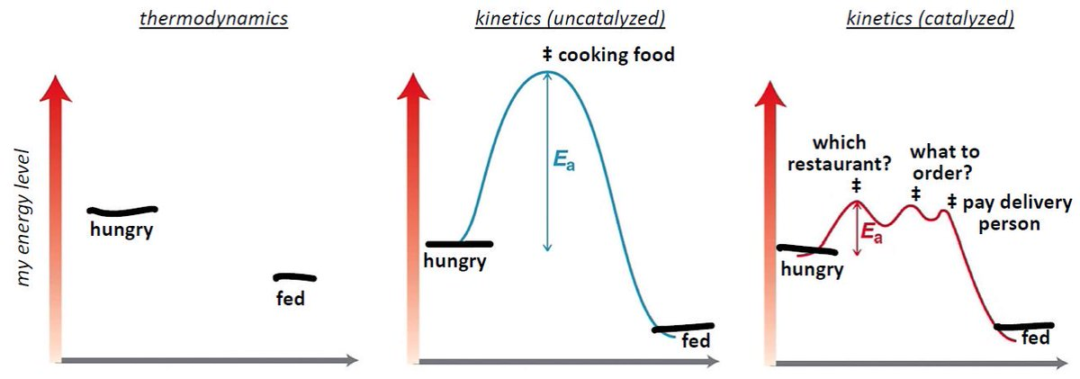 """The difference between thermodynamics and kinetics, """"what should we have for dinner"""" edition https://t.co/yFpp3yg7DJ"""