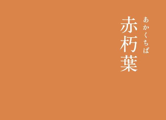 赤朽葉(あかくちば)|にっぽんのいろ地面に舞い散った落ち葉の中でも、赤く紅葉した落ち葉の色。秋らしい美しい色で、平安時代には貴族が秋に着用する装束の色に使われました。▼にっぽんのいろのインスタはこちら#暦生活 #日本 #伝統色 #伝統 #アート #色 #優しい