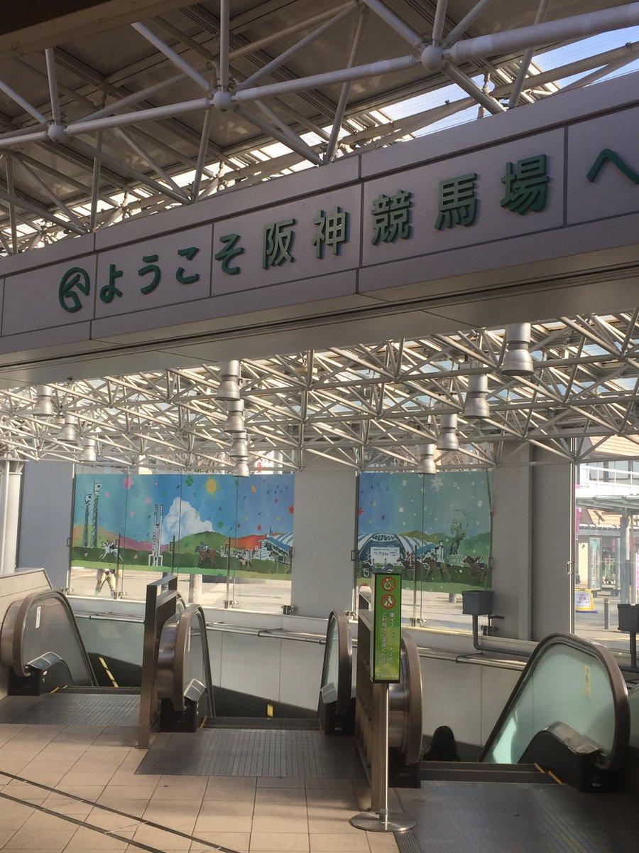 明日、阪神競馬場へ 行くべきか...? #サートゥルナーリア をパドックで見たい気がしてきた... 馬券は買わないか、サートゥルナーリアの複勝が1.1倍つくのをぎりぎりまで待って、複勝10万円で1万円を拾いに行くか... どちらかを選択する。 今週は #安全策を採りたい! #阪神競馬場 #神戸新聞杯