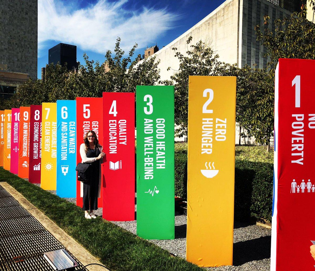 SDG Action Zone! #2030now #Agenda2030 #TeachSDGs #GoalsProject #ClimateActionP