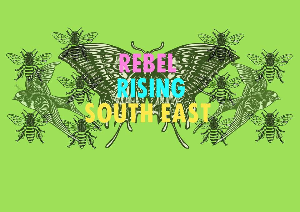 The @XRebellionUK #RebelRisingSouthEast: Regional #ExtinctionRebellion Gathering sees groups come together today and tomorrow in preparation for the next wave of our #InternationalRebellion in October: facebook.com/events/4138767… #RebelRisingFestivals @XRBrighton