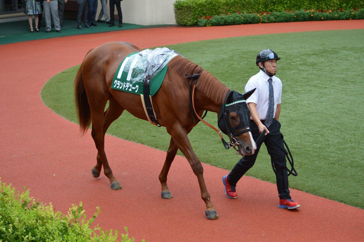 9月1日、小倉11レース、小倉二歳ステークス、⑪グランドデュークと西村淳也騎手。