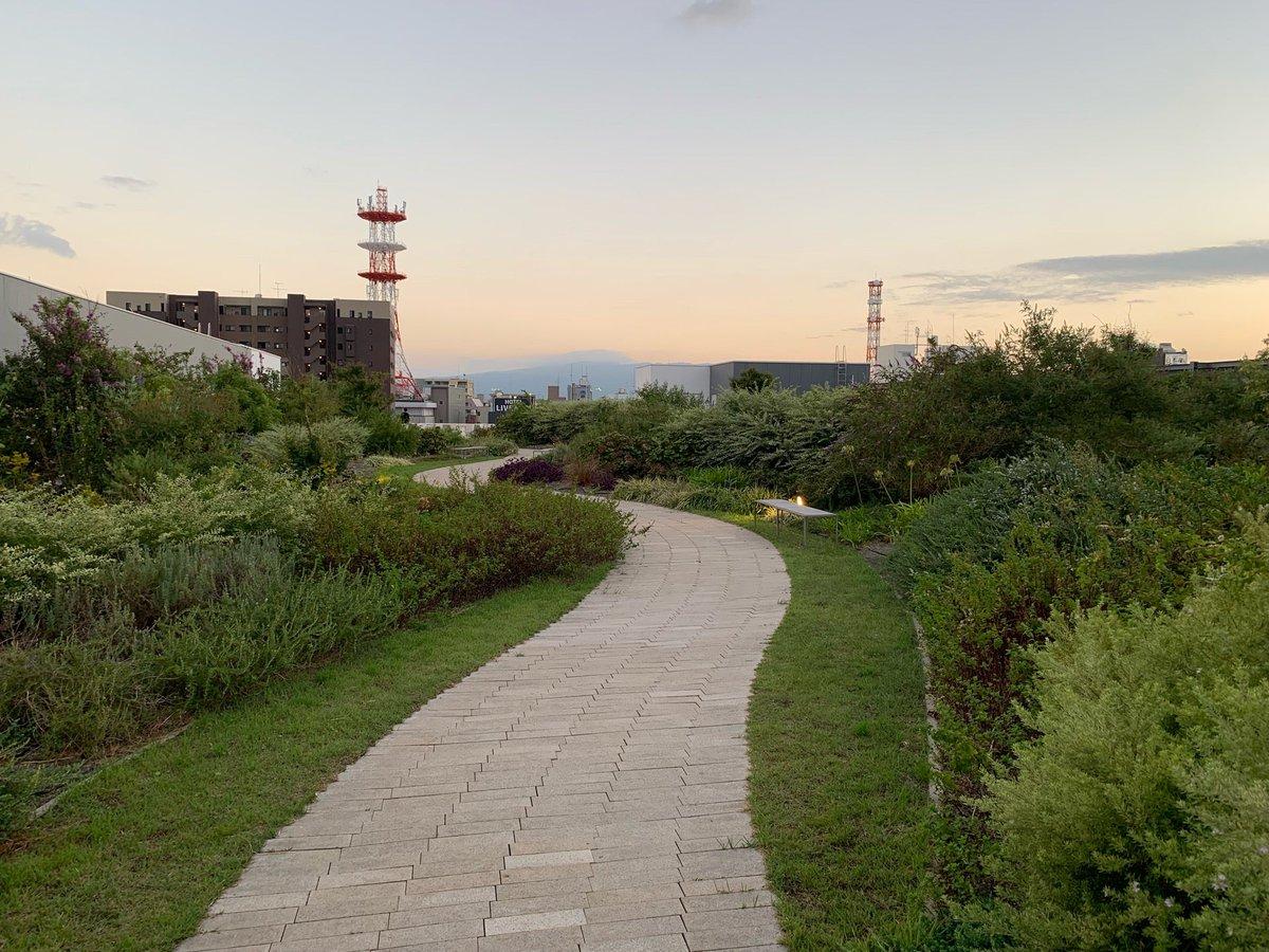 プラサヴェルデ(4)屋上庭園