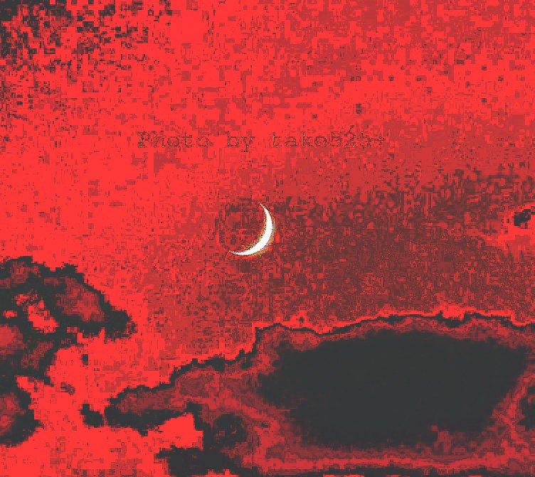 Goodnightおやすみなさいking Crimson/bookof saturday