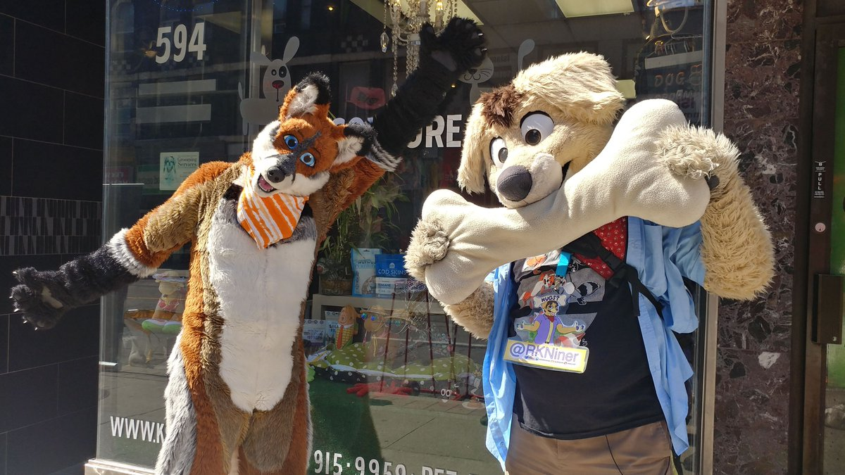 Less than 24 hours until we meet up for the #openstreetsto fursuit walk! While the weather says rain will show up tomorrow afternoon, we are still a GO! <br>http://pic.twitter.com/psMNKTlMfH