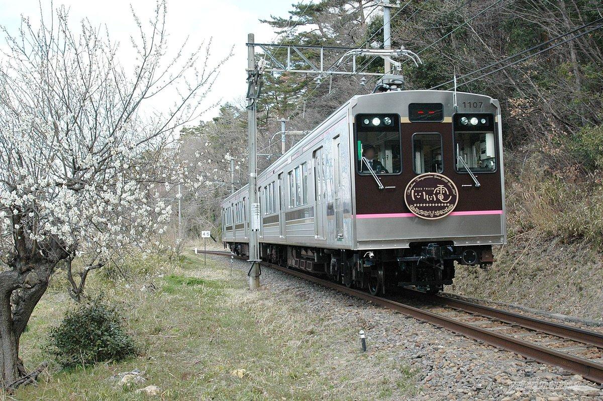 地元の鉄道会社の求人広告に、私の写真が採用されました。(投稿した写真は、諸事情により同じ時間帯に同じ構図で撮影した作品です)