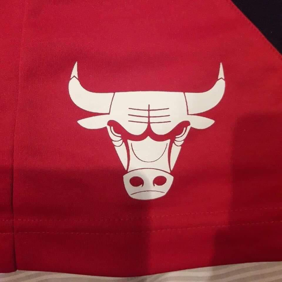 How old were you when you realised the Chicago Bulls logo upside down was a robot shagging a crab? <br>http://pic.twitter.com/tRn5BRq6dH