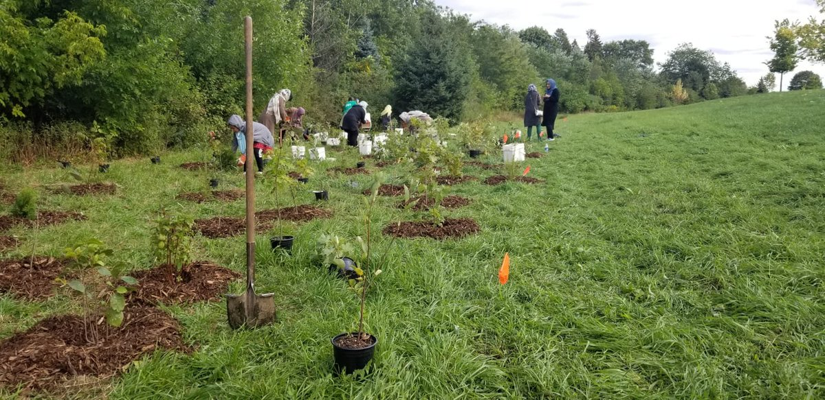 Ladies of all ages from a local chapter of the #Ahmadiyya Muslim Jamaat volunteering with the city of Toronto to plant trees <br>http://pic.twitter.com/wKjG95sgFy
