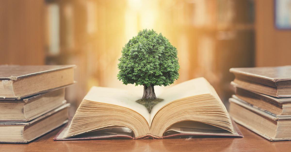 What is wisdom? >>> bit.ly/2lNLzDZ