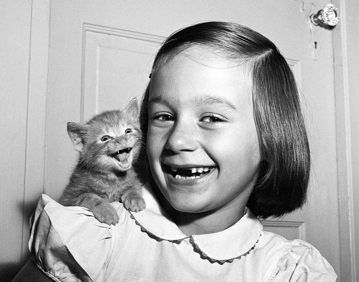 Before the Internet, his cat photos ruled the world cnn.it/2Ai0slE
